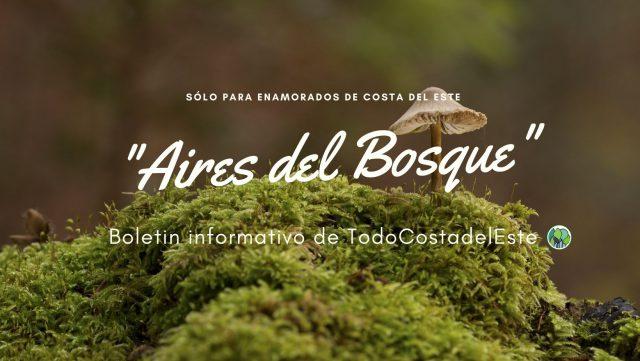 Aires del Bosque Costa del Este ALQUILERES