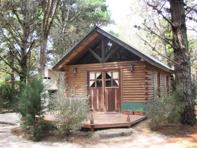 Cabaña Costa del Este