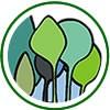 Costa del Este logo verde