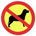 No mascotas