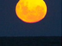 Plenilunio en Costa del Este