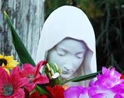 Virgen de Los Pobre es Costa del Este